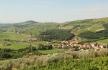Купите себе большой дом в Абхазии с мандариновым садом